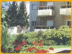 תמונה טובי ירושלים בגולדן היל הגבעה הצרפתית